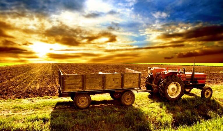 getirisi yüksek olan en karlı tarım ürünleri1