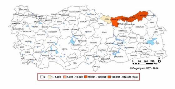 Türkiye Çay Üretimi Haritası