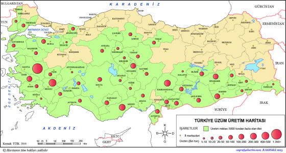Türkiye Üzüm Üretim Haritası