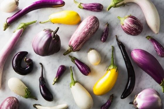 Patlıcan Çeşitleri