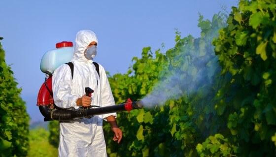 Böcek İlaçlama Firması Açmak