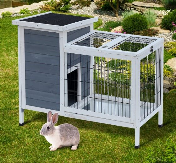 Tavşan Barınağı Kurmak