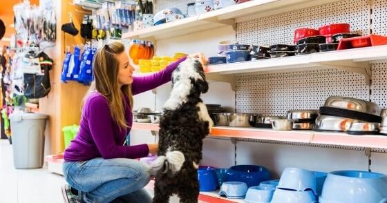 Petshop açmak isteyenlere tavsiyeler