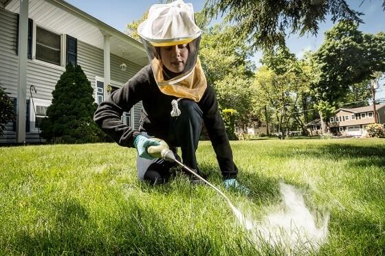 Böcek İlaçlama Şirketi Açmak İçin Gerekli Belgeler