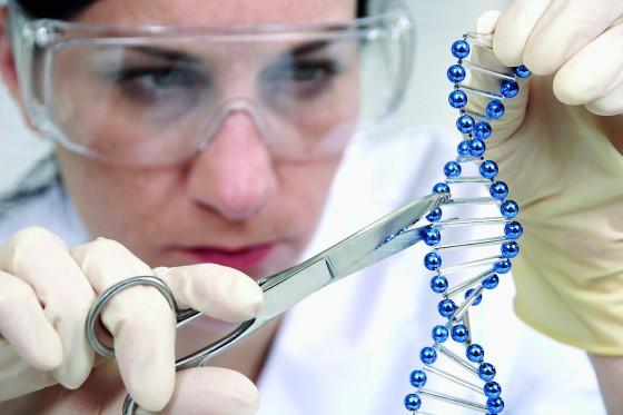 Genetik mühendisi nasıl olunur